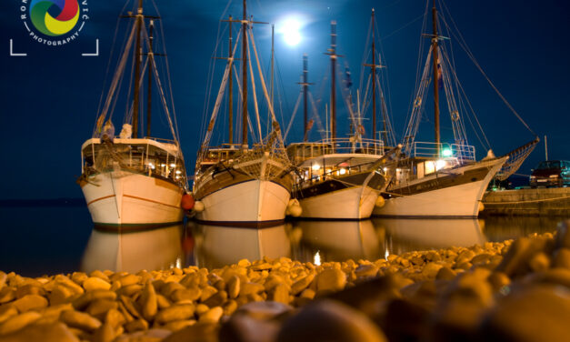 Parked boats under moonlight
